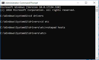 Input, edit, save file hosts