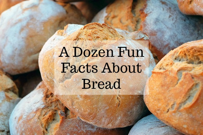 A-dozen-fun-facts-about-bread-text-over-image-of-loaves-#blogtober17-day-11