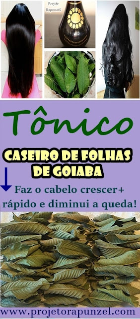 Tônico de Folhas de Goiaba Caseiro
