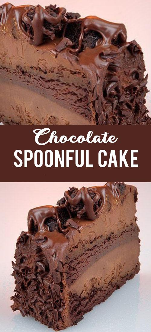 Chocolate Spoonful Cake