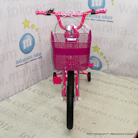 18 Inch Family Girl Power Kids Bike
