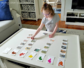 Reptile Continent Sorting Activity and Printable