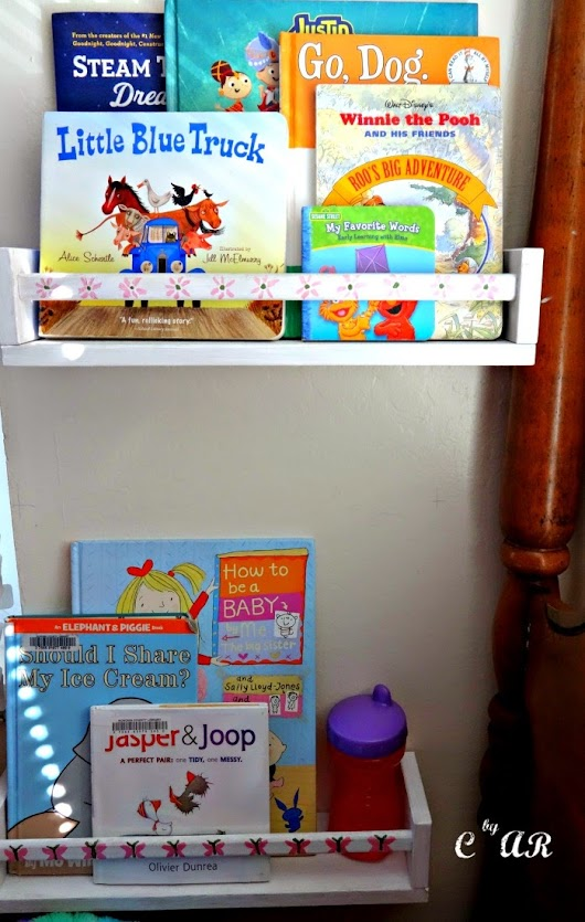 Spice Rack Book Shelves