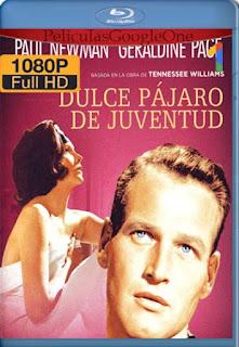 El Dulce Pajaro De La Juventud[1962] [1080p BRrip] [Latino- Ingles] [GoogleDrive] LaChapelHD