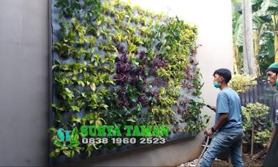 Jasa Pembuatan Taman Vertikal Garden di Bogor - Tukang Rumput Bogor