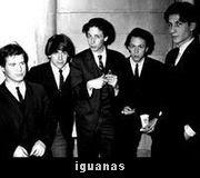 iggy pop - iguanas