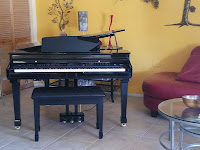 Samick SG500 digital piano polished ebony