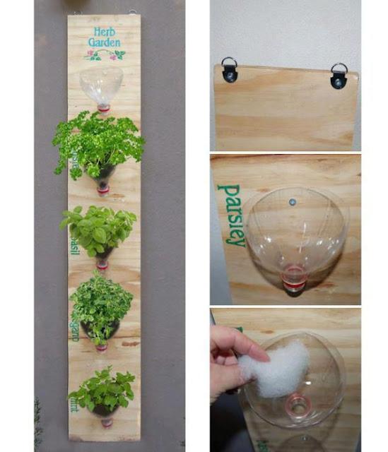 ปลูกผักในกระถาง