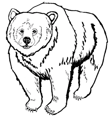 Gambar mewarnai beruang untuk anak - 7