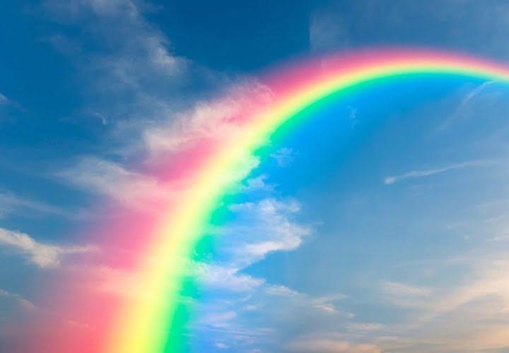 Rainbow Color Palettes