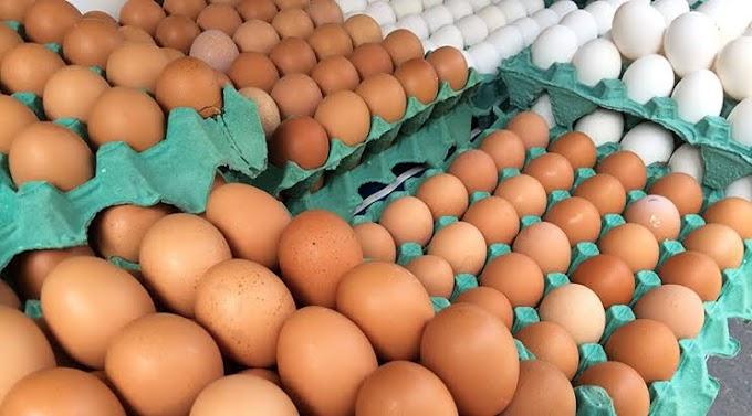 Após comprar pirulitos, prefeitura de Sousa pretende gastar mais de R$ 44 mil com ovos