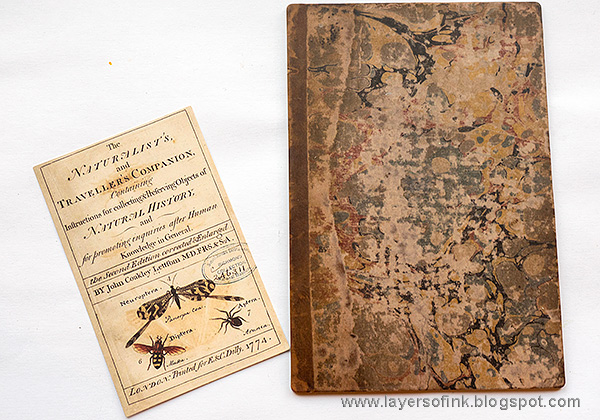 Layers of ink - Vintage Nature Notebook Tutorial by Anna-Karin Evaldsson. With Tim Holtz Salvaged Baseboards.