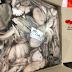 Bỏ sỉ số lượng lớn bạch tuộc tươi đông lạnh