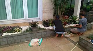 pembuatan taman kering dalam rumah