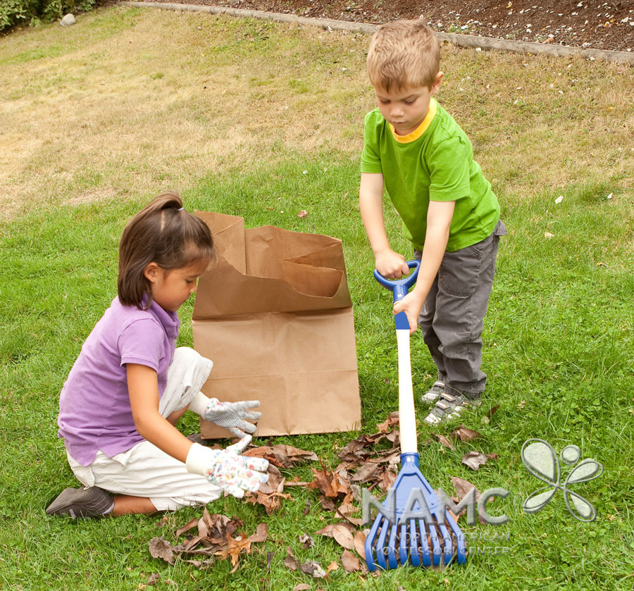 namc montessori functionality environment. children raking leaves