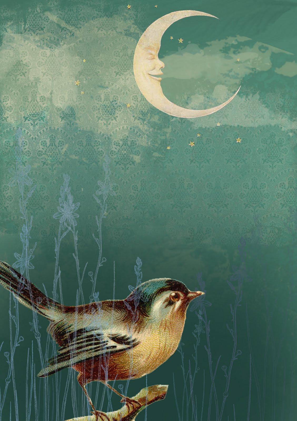 It is an image of Fan Birds In The Moon Drawing