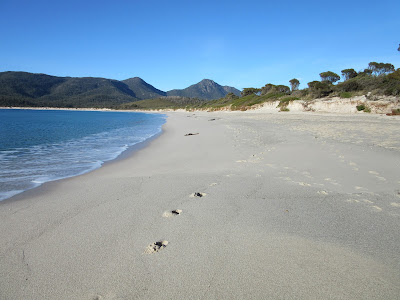 Playa de la Wineglass Bay, en Freycinet, Tasmania