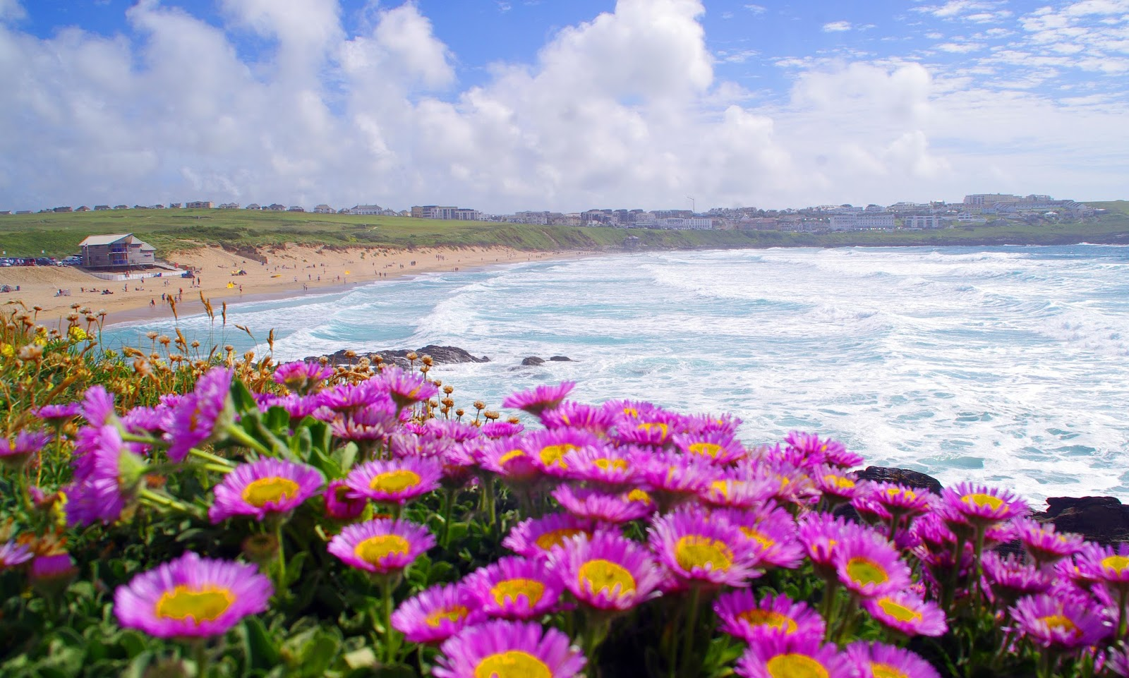 Headland Hotel Newquay Cornwall Fistral Beach Summer Flowers