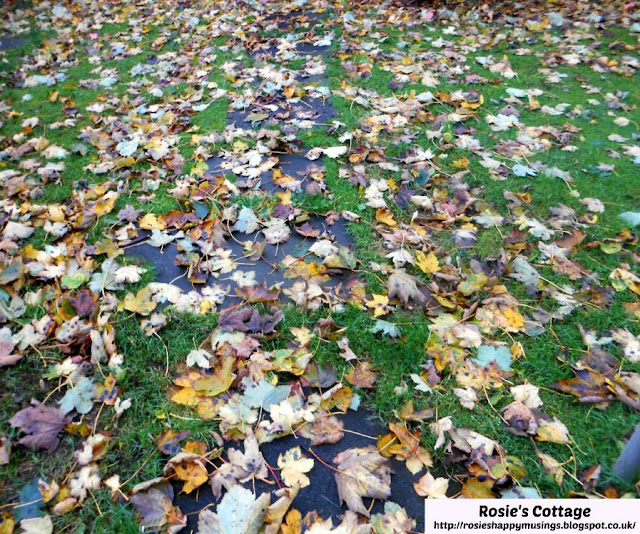 My 5 favourite things about Autumn/Fall:  Watching Jade and her dad have fun clearing the leaves in the garden.