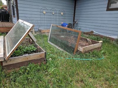 image of 2 raised garden beds