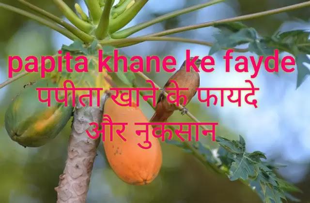 Papita khane ke fayde |पपीता खाने के फायदे और नुकसान