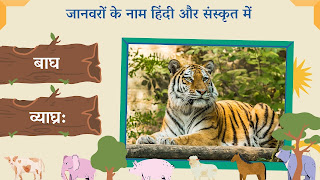 Tiger name in sanskrit and hindi with images