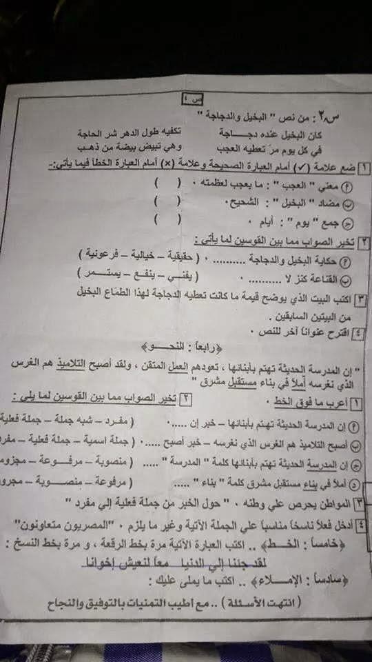 امتحان بور سعيد للصف السادس الإبتدائى لغة عربية ترم أول 2015 10431483_15384584864
