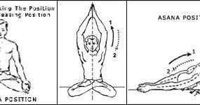 how to practice sharangata mudra  yoga for health