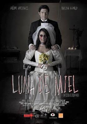 Luna De Miel 2015 DVD Custom NTSC Latino