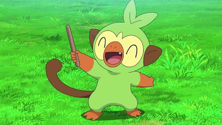 Grookey Jornadas Pokémon