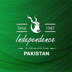 Pakistani%2BFlag%2BHoly%2BDay%2B%25288%2529