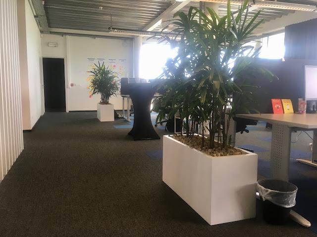 Planten voor bedrijf huren of kopen met onderhoudscontract