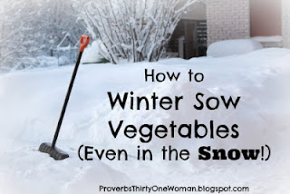 https://proverbsthirtyonewoman.blogspot.com/2010/01/how-to-winter-sow-vegetables-and.html