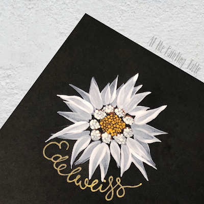 Handpainted white Edelweiss flower on black paper.  White petals with a white and yellow centre.