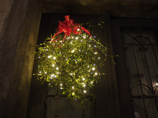 Mistletoe adorned with festive lights