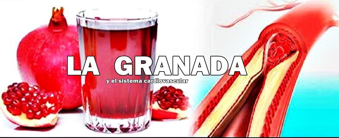 granada-contra-arterosclerosis