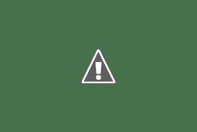 Imagem de vitrine em cor verde
