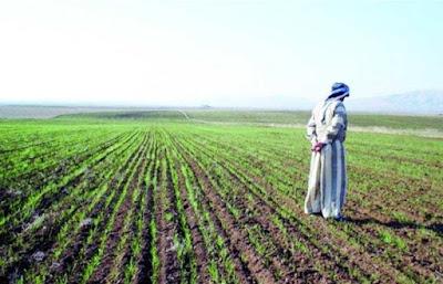 الكشف عن موعد صرف مستحقات الفلاحين والمزارعين بمبلغ 500 مليار دينار كدفعة اولى