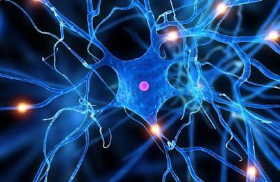neuropsicología evaluación