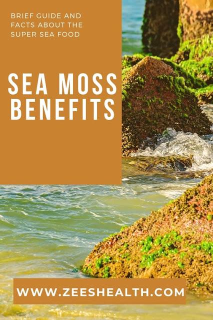 sea moss benefits