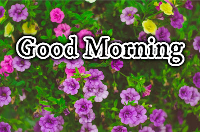 Image of Good Morning