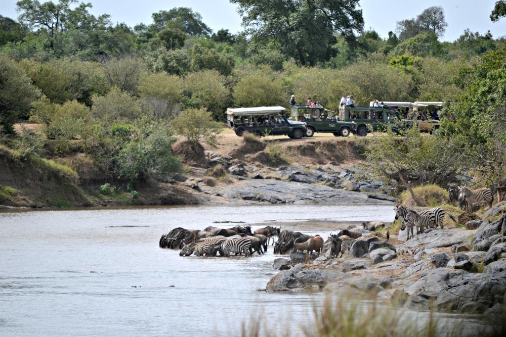 african safari in kenya masai mara andbeyond