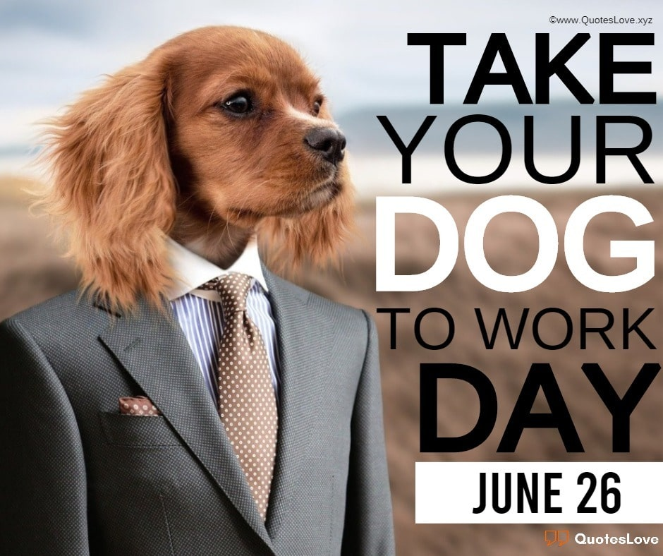 Take Your Dog To Work Day Quotes, Sayings, Messages, Greetings, Wishes, Images, Pictures, Wallpaper