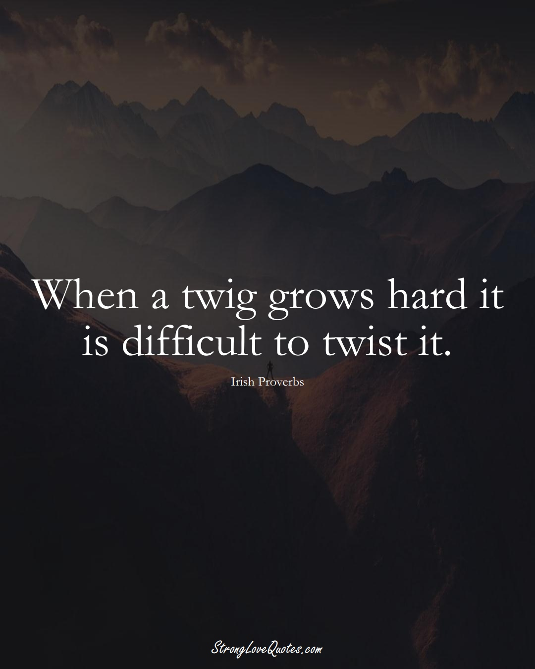 When a twig grows hard it is difficult to twist it. (Irish Sayings);  #EuropeanSayings