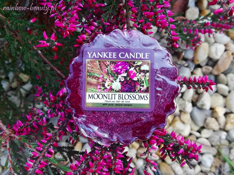 moonlit-blossoms-yankee-candle-opinie-blog
