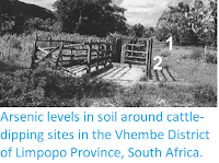 http://sciencythoughts.blogspot.co.uk/2014/08/arsenic-levels-in-soil-around-cattle.html