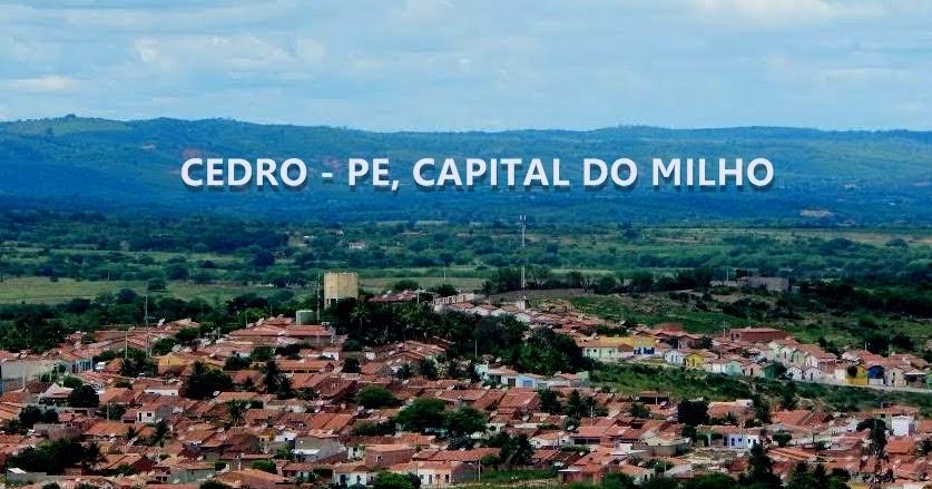 Cedro Pernambuco fonte: 1.bp.blogspot.com
