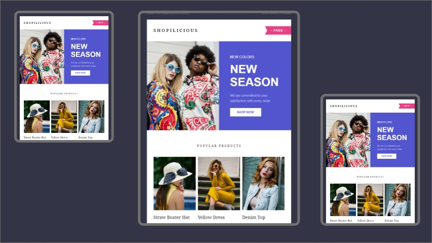 Shopilicious email template