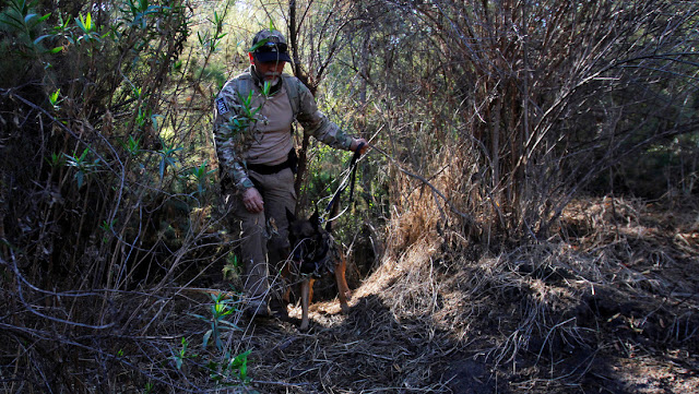 Hallan una fosa clandestina con 25 cuerpos en el estado mexicano de Jalisco