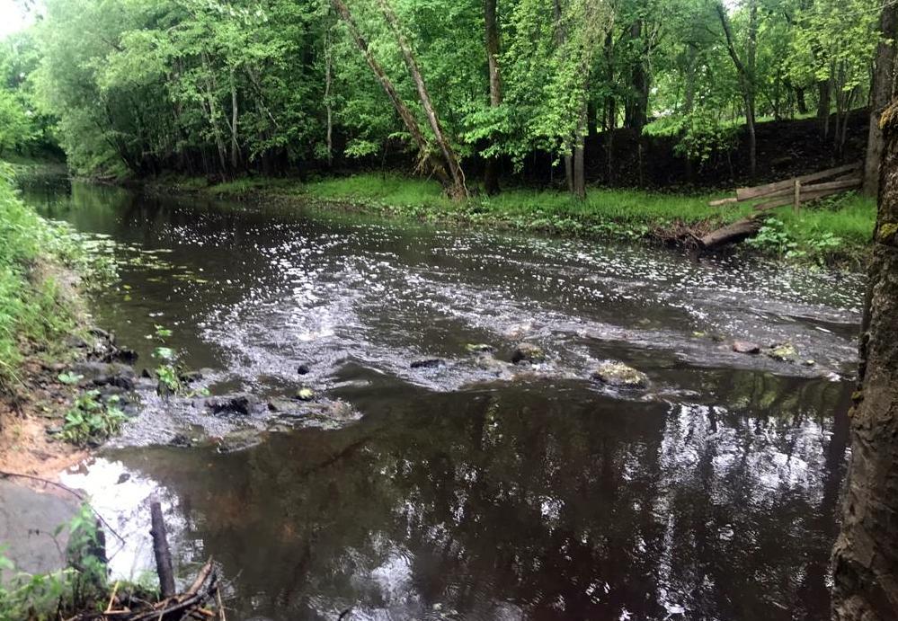 Neliela krāce upē
